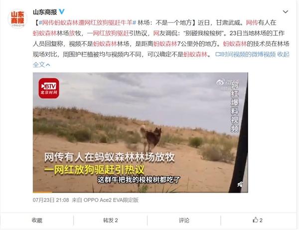 传某网红在甘肃武威蚂蚁森林放狗驱赶牛羊 现场人员:谣言